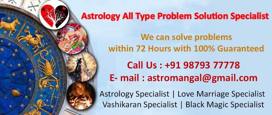 astrologer in india